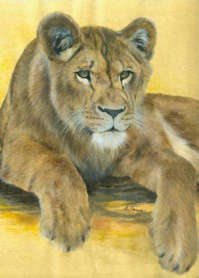 Portrait de lionne dessin r alis par laurence saunois - Lionne dessin ...
